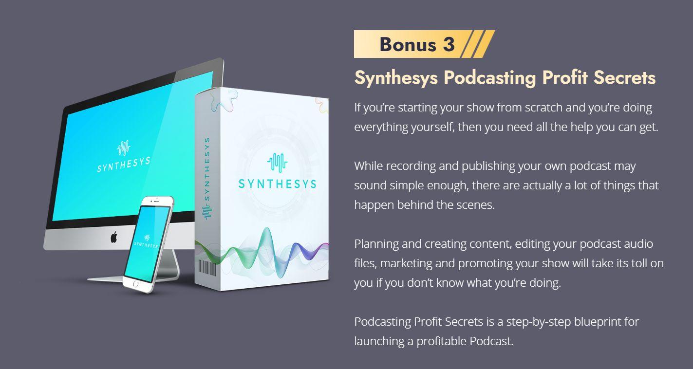Synthesys-bonus-3