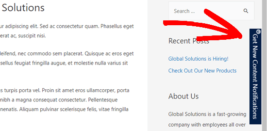 A button notification widget shown on the demo website