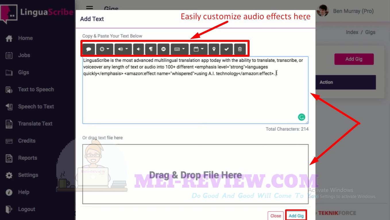 LinguaScribe-Demo-14-customize-audio