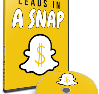 Leads-In-A-Snap-Review