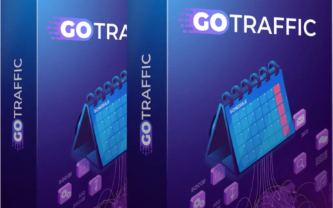 GoTraffic-review