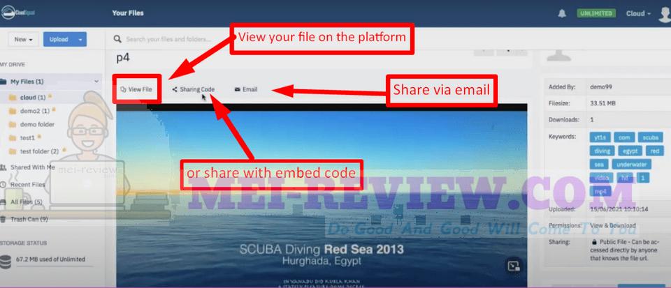 CloudSquad-demo-3-host-the-file-online