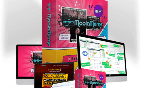MoolaMeme-Review