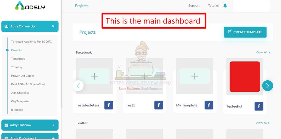 Adsly-demo-2-dashboard