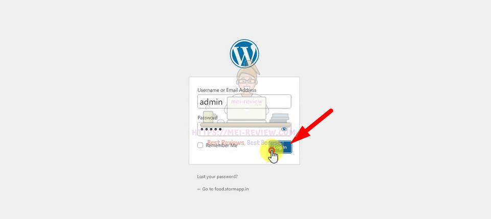 Storm-Software-Demo-5-login-wordpress